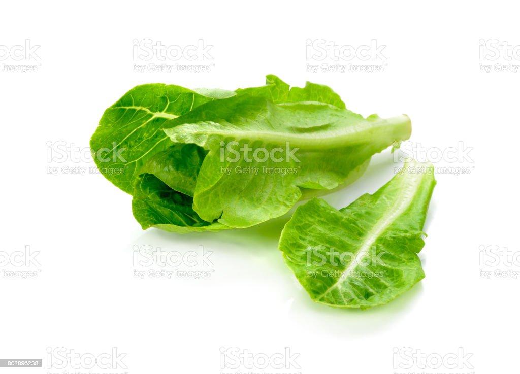 Fresh lettuce isolated on white. Fresh green vegetables. stock photo