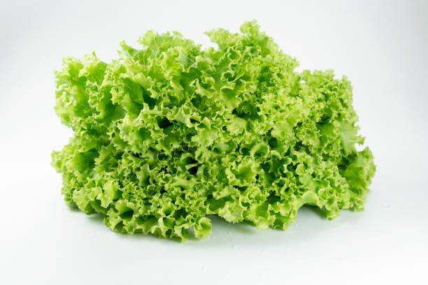 신선한 양상추 잎 은 흰색 배경에 고립 된 건강한 음식이나 야채 샐러드를 요리하기위한, 그것은 비타민 식용과 맛있는 좋은 소스입니다. 스톡 사진
