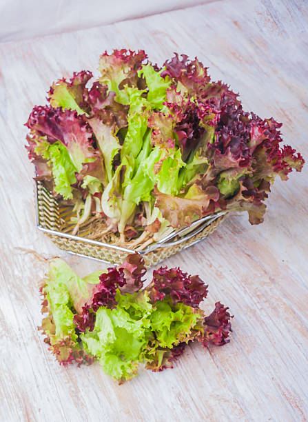 Fresh lettuce on a wooden table stock photo