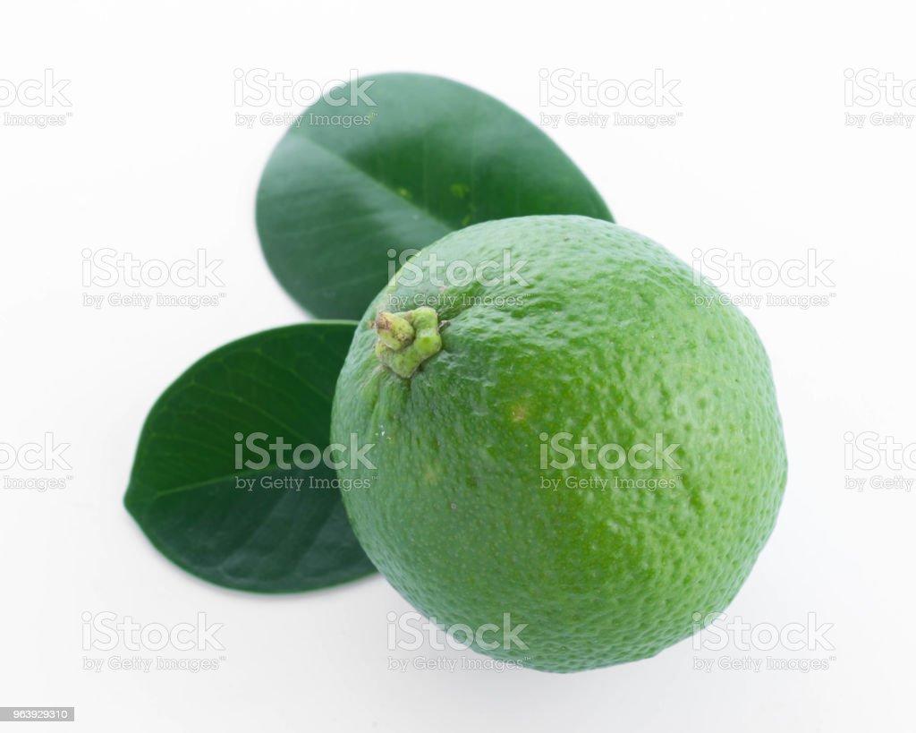 fresh lime isolated on white background - Royalty-free Citrus Fruit Stock Photo
