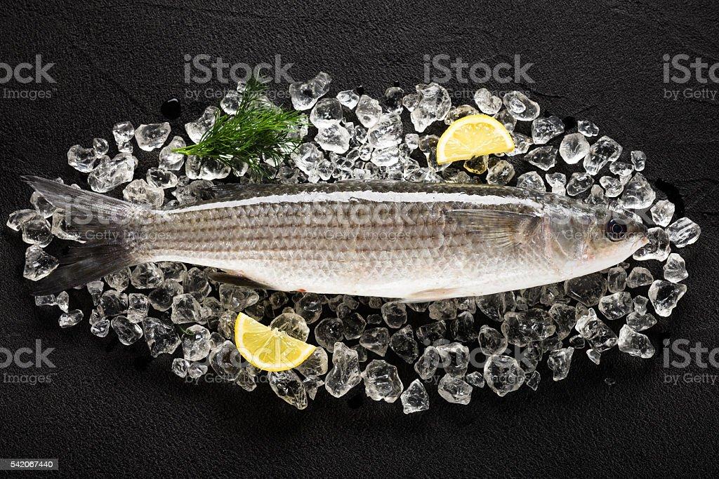 Fresh liza fish on ice on a black stone table stock photo