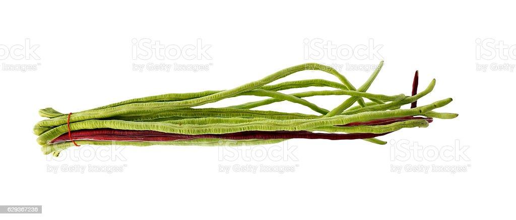 fresh long beans. stock photo