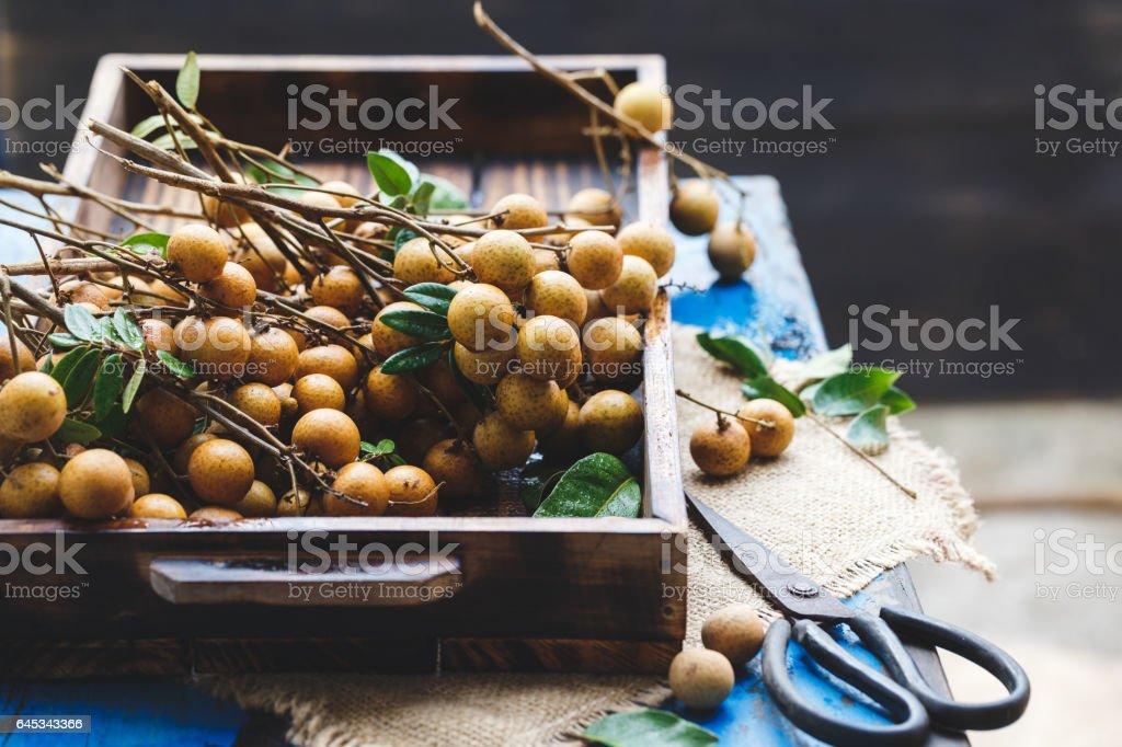 Fresh Longans stock photo