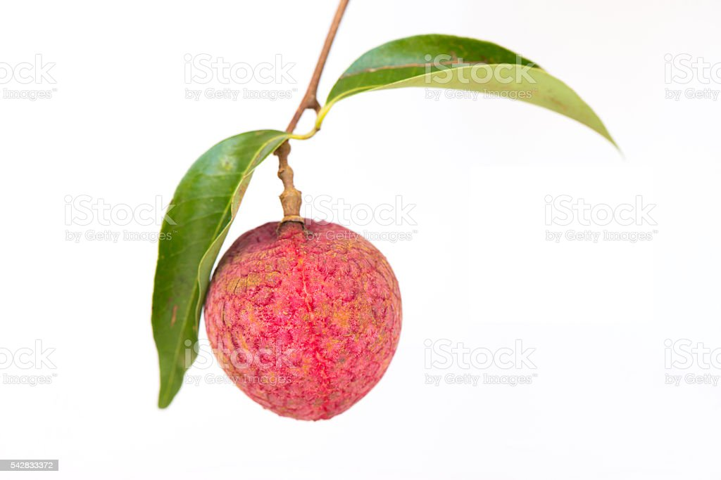 Fresh lychees isolated on white background. stock photo