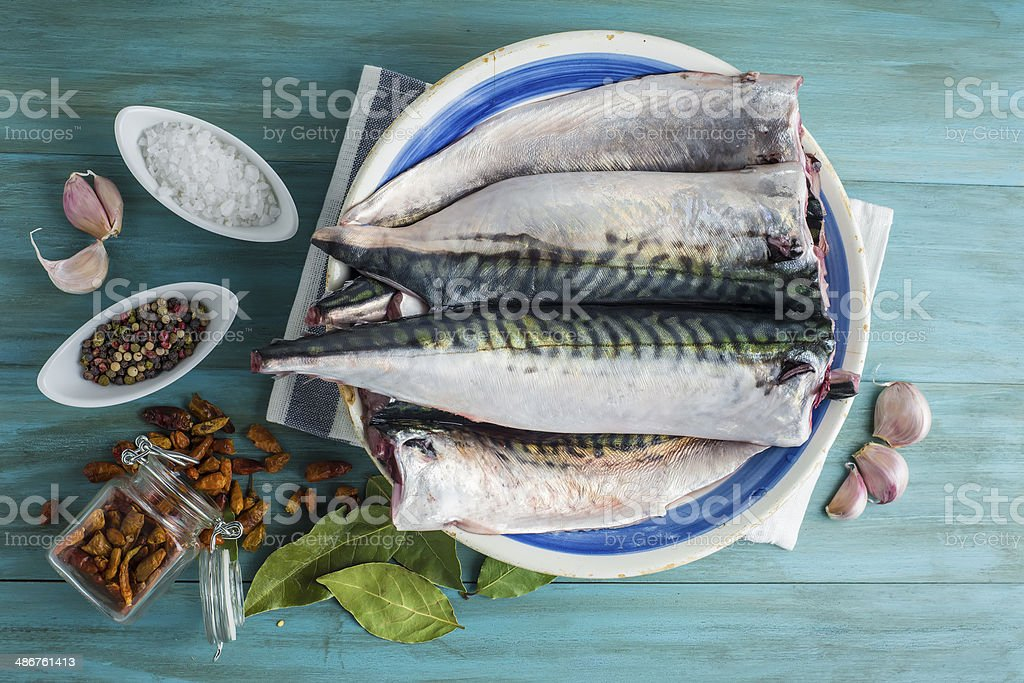 Fresh mackerel to cook stock photo