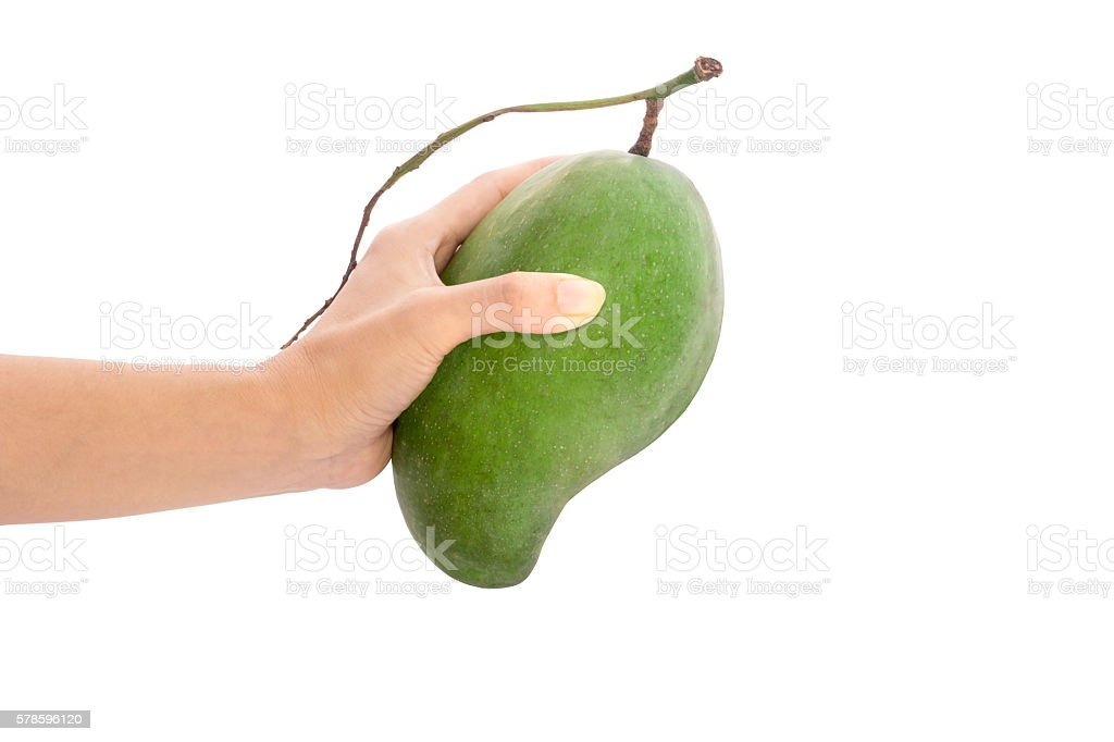 Fresh mango - Green mangoes on woman hands with isolated stock photo