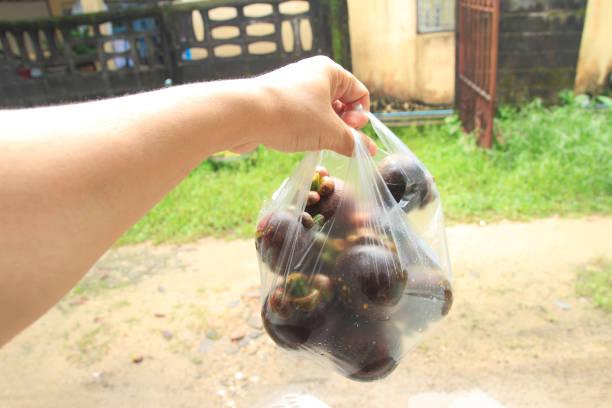 fresh Mangosteen, tropical fruit