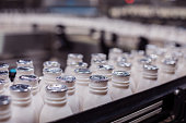 Africa, Industry, Business, Factory, Automatic - Freshly filled Milk Bottles Moving on the Conveyor Belt to the Packaging Area
