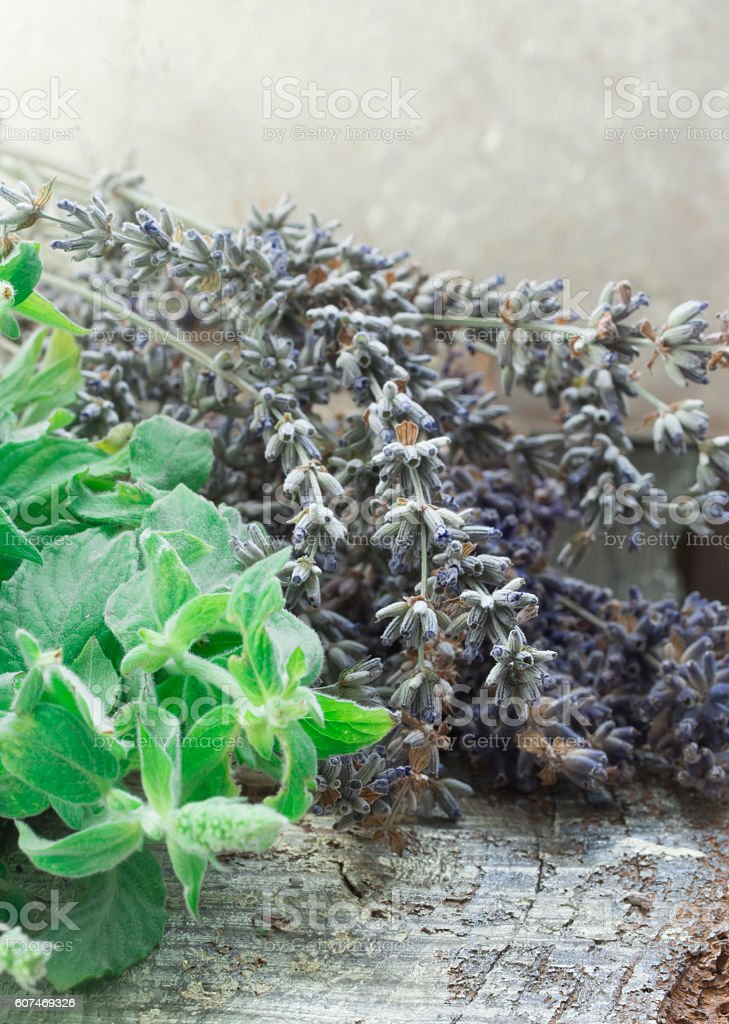 fresh mint and dry lavender stock photo