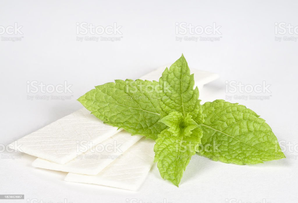 Fresh Mint Chewing Gum stock photo