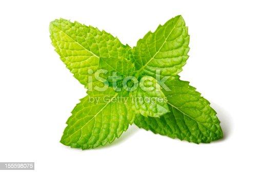 Macro photo of a fresh mint leaf, isolated on white (studio shot).