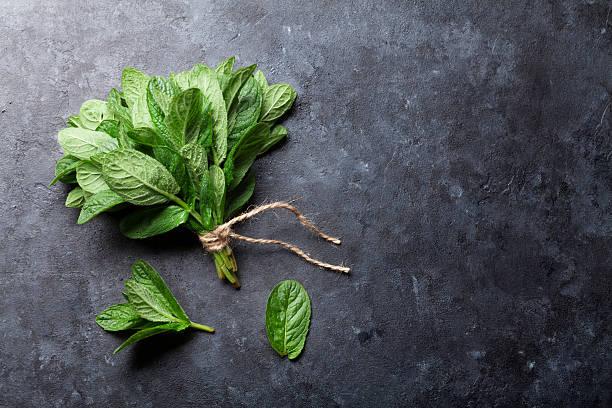 foglie fresche di menta erbe aromatiche su pietra - menta erba aromatica foto e immagini stock