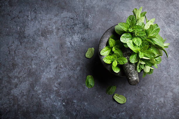 Fresh mint leaves in mortar on stone table stock photo