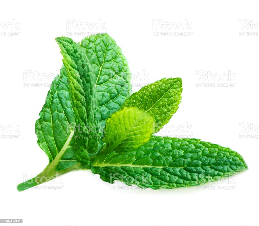6e263f0b633b Fresh Mint Leaves Isolated On White Background Raw Mint Peppermint ...