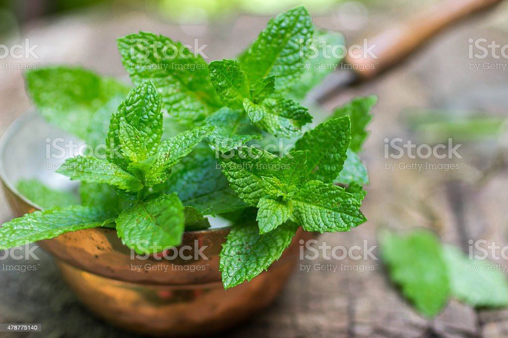 Fresh mint on a wooden table stock photo