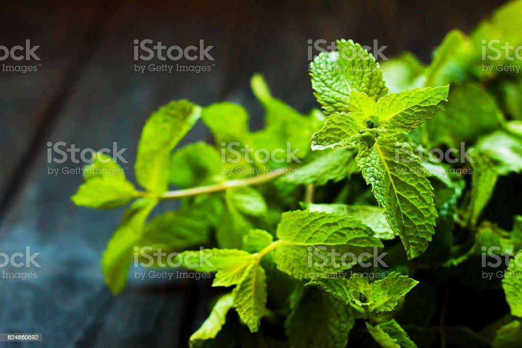 Fresh mint on dark wooden background stock photo