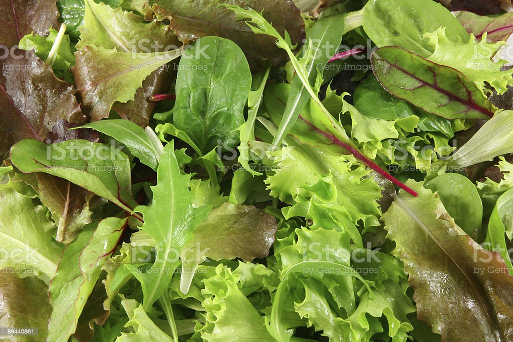 Świeże mieszane sałaty, widok z góry zbiór zdjęć royalty-free
