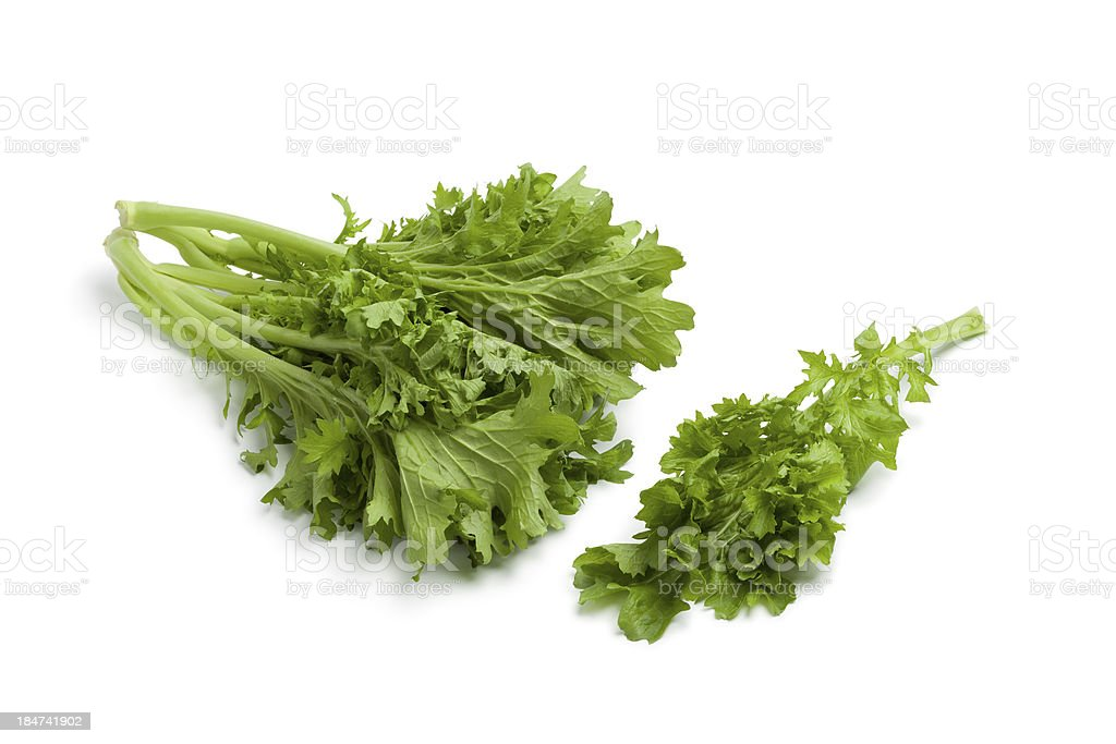 Fresh Mizuna stock photo