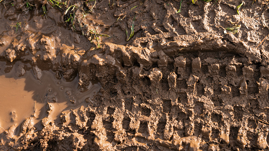 Close-up photograph of the tire track of a mountain bike in wet Scottish mud.