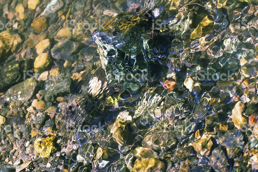 fresh mountain creek stock photo