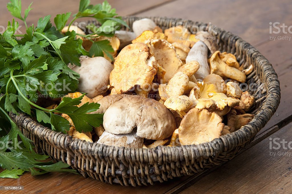 Fresh Mushrooms in a Basket royalty-free stock photo