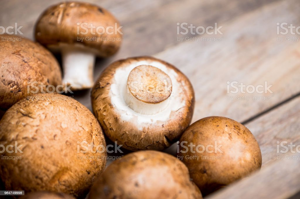 Fresh mushrooms on the rustic wooden background royalty-free stock photo