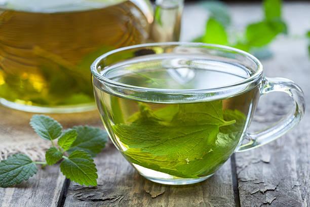 Fresh natural green melissa herbal tea in glass cup. Organic stock photo
