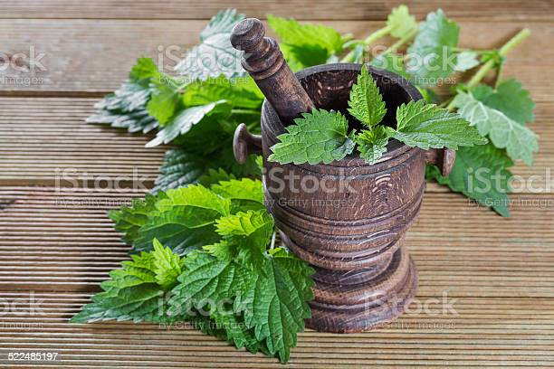 Fresh Nettle Leaves With A Mortar On A Wooden Background Stock Photo - Download Image Now