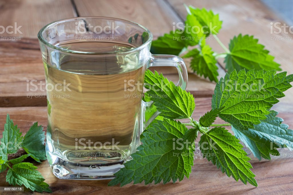 Fresh nettles with a cup of nettle tea stock photo
