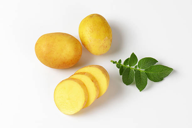 fresh new potatoes stock photo
