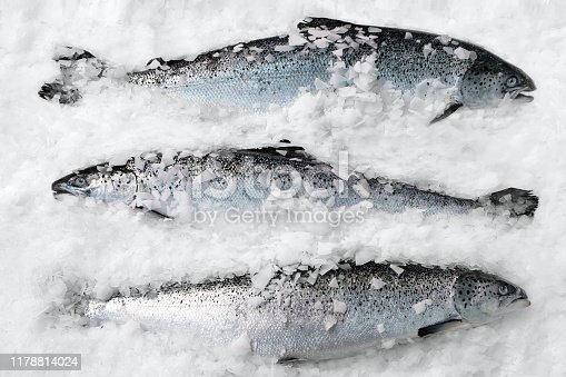 istock Fresh Norwegian salmon on ice in supermarket 1178814024