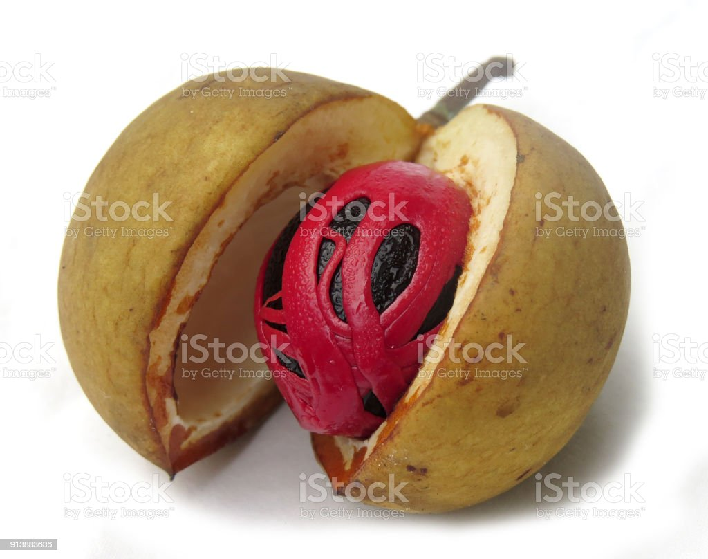 Fresh nutmeg and its mace and shell stock photo