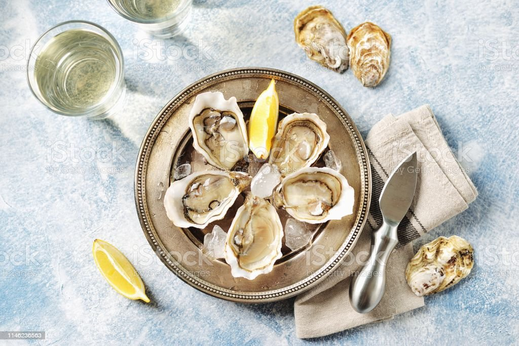 Fresh ocean oysters with slices of lemon on ice. Top view. Copy cpace. Fresh ocean oysters with slices of lemon on ice. Top view. Copy cpace. Animal Shell Stock Photo