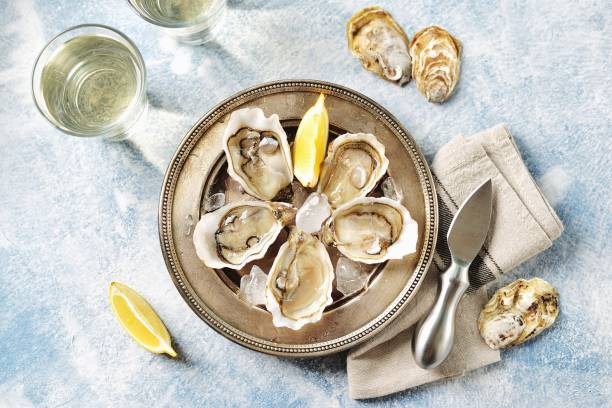 Fresh ocean oysters with slices of lemon on ice. Top view. Copy cpace. stock photo