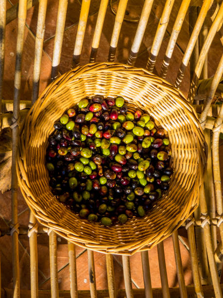 Fresh Olives in Basket stock photo