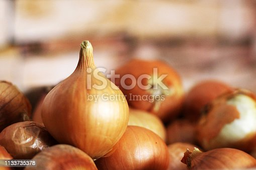Fresh onions, good harvest, vegetables so close