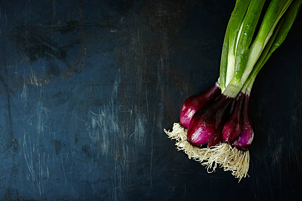 fresh onions - food styling stock photos and pictures