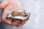 istock Fresh open oyster in the hand 1225380063