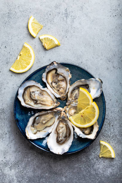 fresh opened oysters - oyster stock pictures, royalty-free photos & images