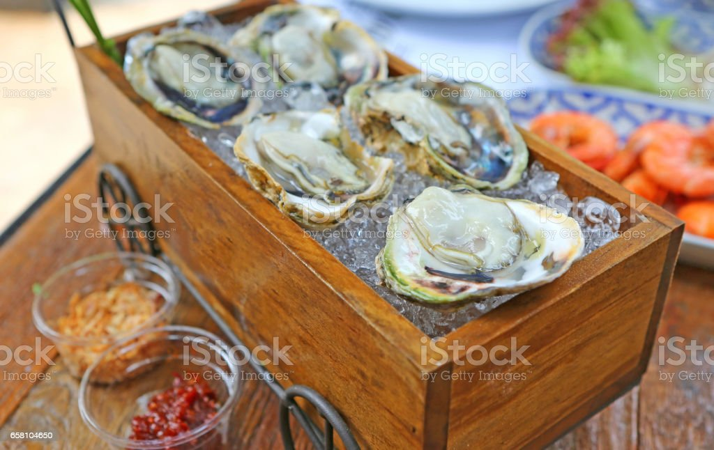 Fresh opened Oysters ready for eating. royalty-free stock photo