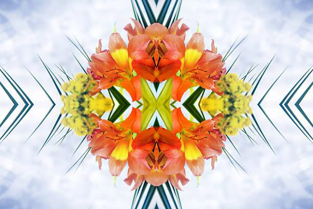 fresh orange alstroemeria flowers petal surreal shaped symmetrical kaleidoscope - meerdere lagen effect stockfoto's en -beelden