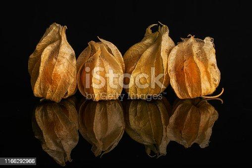 istock Fresh orange physalis isolated on black glass 1166292966