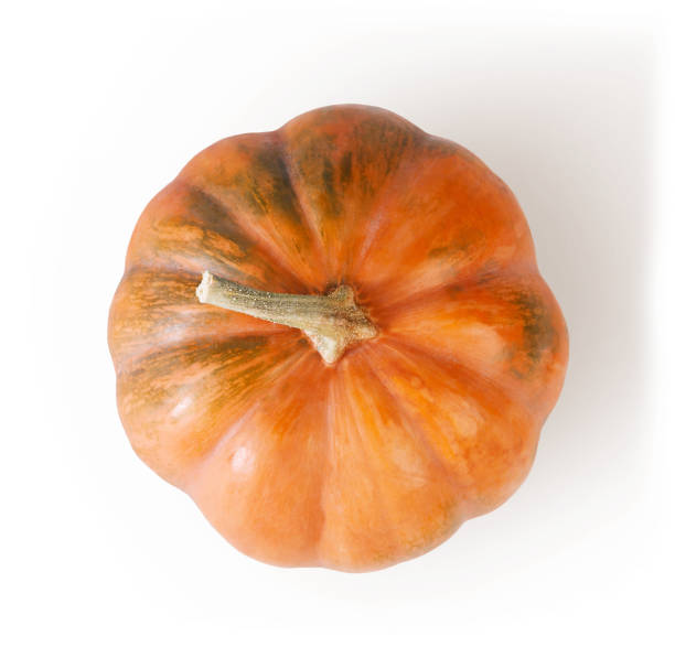 fresh orange pumpkin isolated on white background - gourd stock photos and pictures