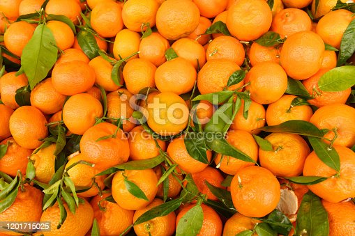 This is a close up photograph of orange citrus fruit from Spain on retail display at an outdoor farmer's market in Paris, France.