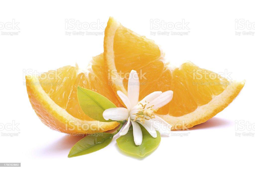Fresh oranges with orange blossom stock photo