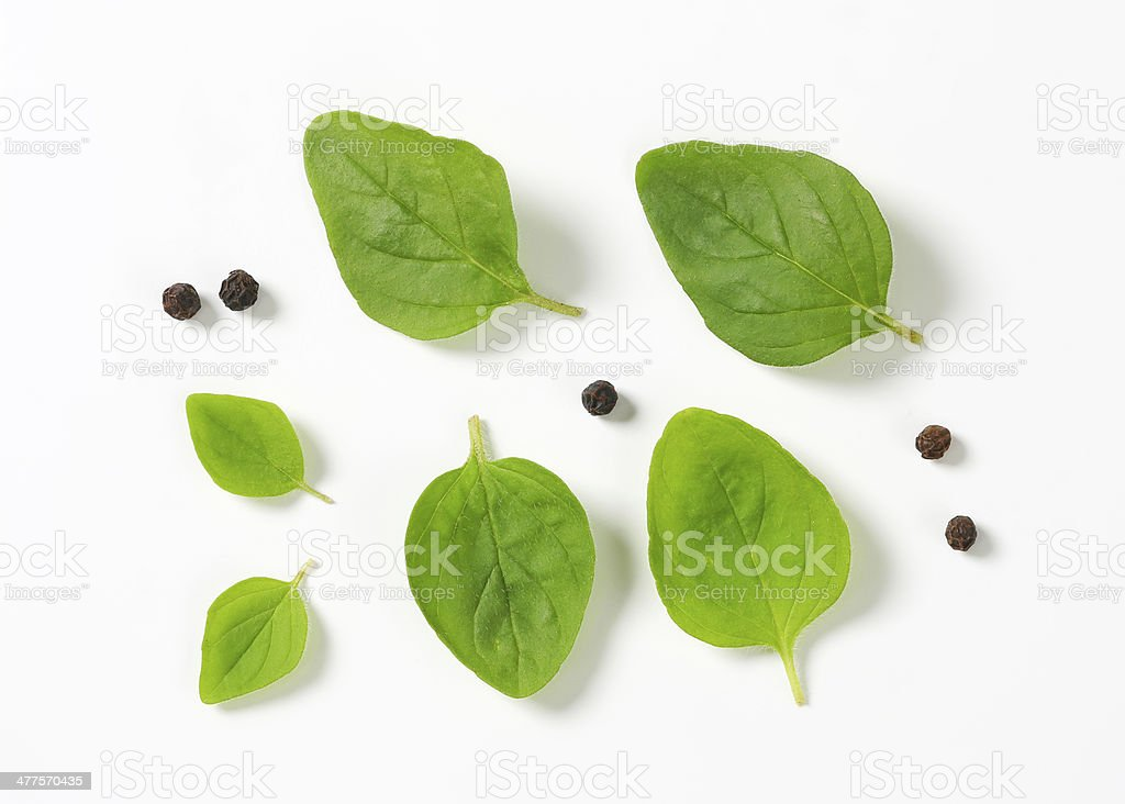Fresh oregano leaves and peppercorns stock photo