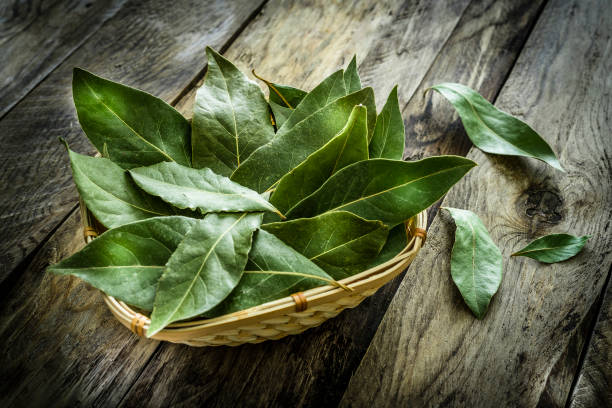 fresh organic bay leaves on rustic wooden table - alloro foto e immagini stock