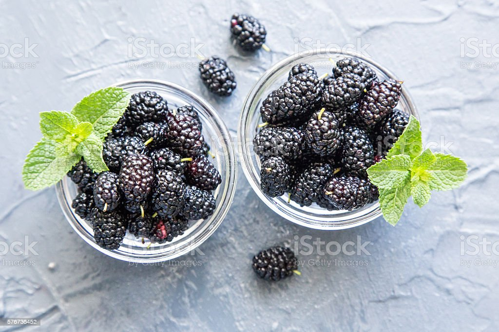 Fresh organic black mulberry in a small  plates - foto de acervo