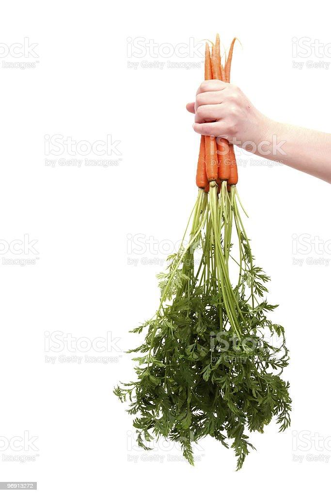 Fresh organic carrot royalty-free stock photo