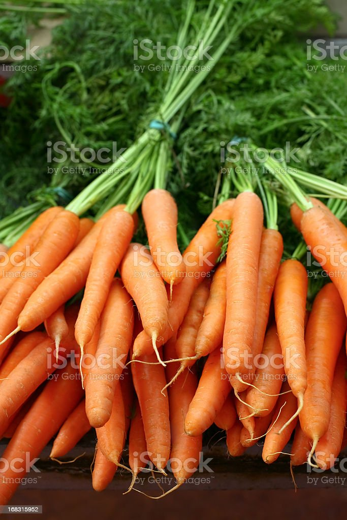 Fresh organic carrots in bundles royalty-free stock photo